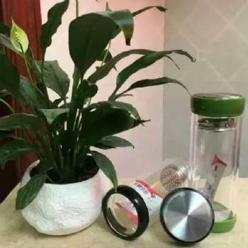 西安礼品玻璃杯印字 品牌希诺水杯 西安杯子销售厂家