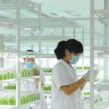 昆明组培货架,植物组培货架厂