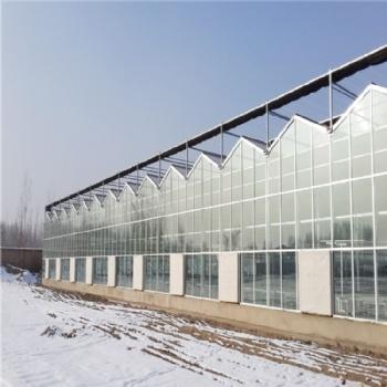 阳光板温室 小型温室建设 连栋温室 厂家