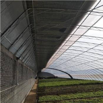 日光温室 小型温室 温室承建 连栋温室