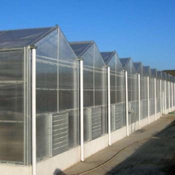 连栋阳光板温室 温室蔬菜大棚 温室造价