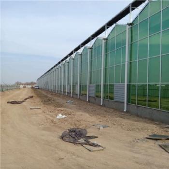 新型智能温室 玻璃温室材料 温室造价