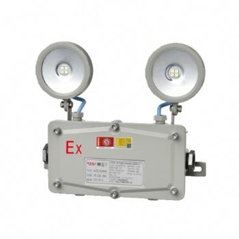 应急灯生产专家,大量供应防水防爆型应急双头照明灯