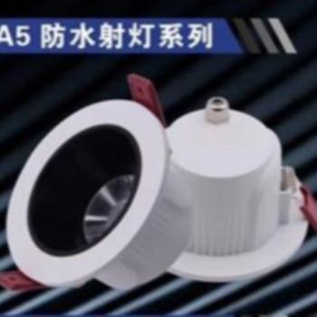 射灯LED灯A5防水系列天花灯