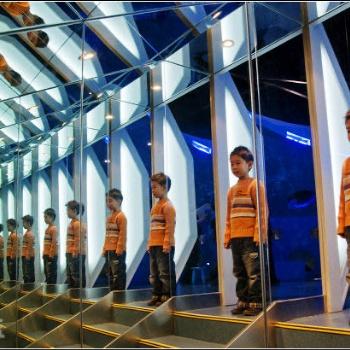 河南紫晨游乐镜子迷宫包装整体设计